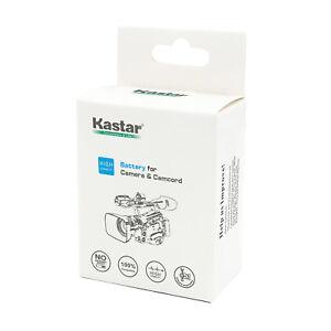 Kastar Battery LCD Fast Charger for AG-VBR59 AG-B23
