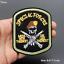Patch-Toppa-Esercito-Militare-Military-AirBorne-AirForce-Ricamata-Termoadesiva Indexbild 28