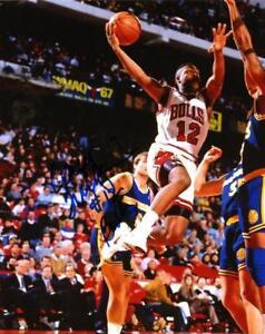 Photos Corey Williams Chicago Bulls Signed Autographed 8x10 Photo W/coa Sports Mem, Cards & Fan Shop