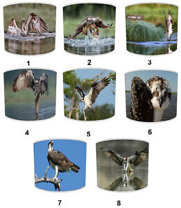 Osprey-Bird-Of-Prey-Lampshades-Ideal-to-Match-Osprey-Bedding-Sets-amp-Duvet-Covers