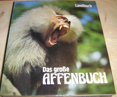1 von 1 - Tylinek Berger - Das große Affenbuch