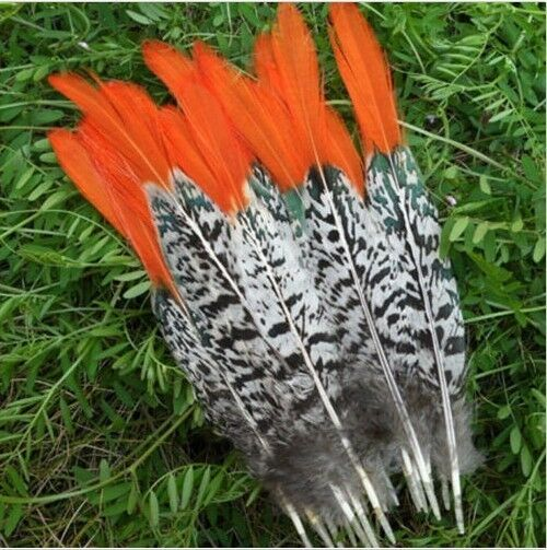 Wholesale 10 pcs-100 pcs pheasants tail feathers 6-14 inches/15-35cm