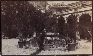 Taormina-Chiostro-Hotel-San-Domenico-Italia-Vintage-Citrato-H-B-Tate-1904