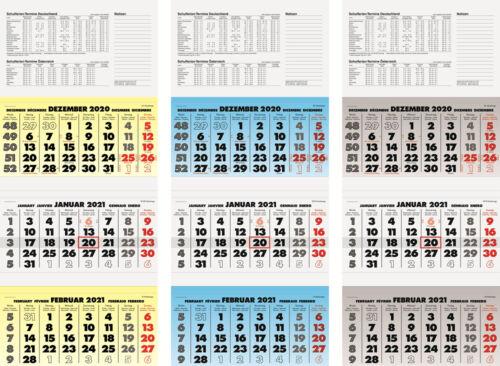 Brunnen 2021 Dreimonatskalender 1070213951 sortiert 34x79cm 3 Monatsblöcke 1B//1M