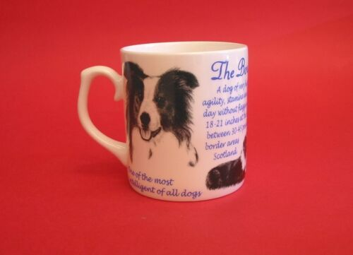 Border Collie Dog Fine Bone China Mug Pet Mothers Day Dad Christmas Gift NEW