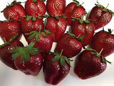 Artificial Large Strawberry, Bag of 16 Decorative Fake Fruit Fake Strawberries
