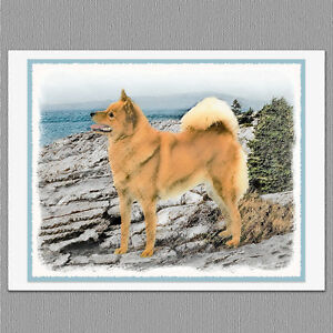 6 finnish spitz dog blank art note greeting cards ebay image is loading 6 finnish spitz dog blank art note greeting m4hsunfo