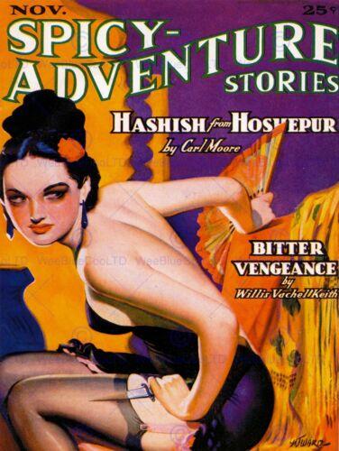 MAGAZINE COVER SPICY ADVENTURE STORIES HASHISH HOSHEPUR USA ART POSTER CC6355