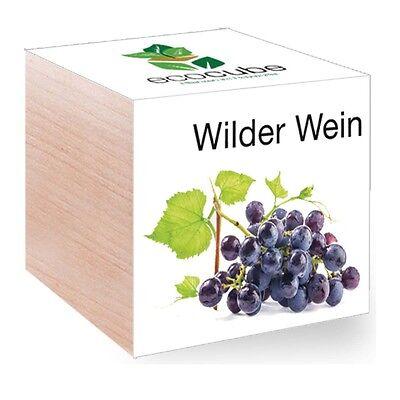 Feel Green EcoCube Wilder Wein Holz violett NEU + OVP