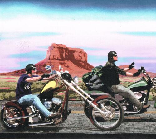 MAY NOT BE HARLEY-DAVIDSON BUT THATS A HOG MOTORCYCLE Wallpaper Wall bordeR BIKE