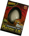 Hatch-em Hatching Dinosaur Egg 6cm