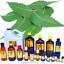 3ml-Essential-Oils-Many-Different-Oils-To-Choose-From-Buy-3-Get-1-Free thumbnail 67