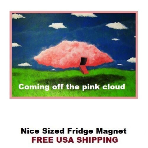 255 Alcoholics Anonymous Pink Cloud Refrigerator Fridge Magnet