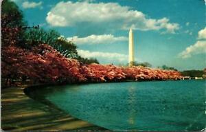Washington-Memorial-Washington-DC-Postcard-unused-1950s