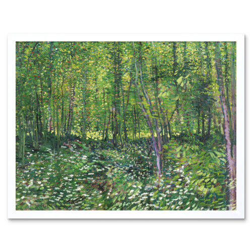 Vincent Van Gogh Trees And Undergrowth Art Print Framed 12x16