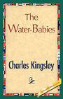 The Water-Babies by Kingsley Charles Kingsley, Charles Kingsley (Paperback / softback, 2007)