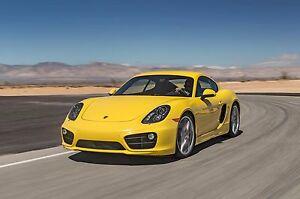 2015-Porsche-911-Cayman-yellow-24-x-36-Poster