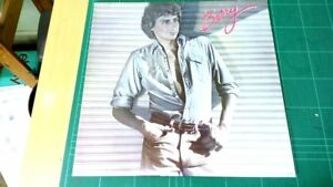 Barry-Barry-Manilow-1980-Original-Vinyl-LP-Album-Arista-DLART-2
