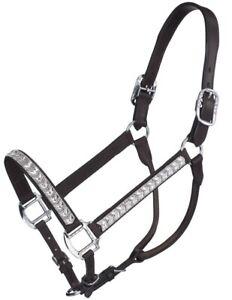 Horse Size Silver Ferrule Horse Show Halter Lead Shank Dark Oil Leather