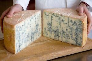 Veined-Italian-GORGONZOLA-Blue-CHEESE-Crumbly-firm-soft-mild-sharp-Aroma-nutty