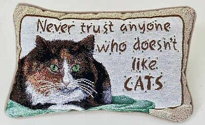 """I Cleaned My House Last Week Sorry You Missed It  8/""""x12/"""" NEW Tapestry Pillow USA"""