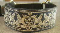 Gold Griffin Martingale Dog Collar Lead Whippet Greyhound Saluki Afghan Hound