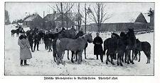 Jüdische Pferdehändler in Russisch-Polen Historische Aufnahme von 1915