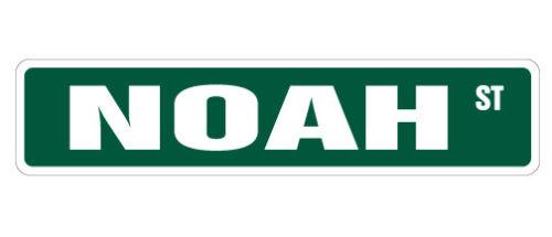 Indoor//Outdoor NOAH Street Sign Childrens Name Room Decal