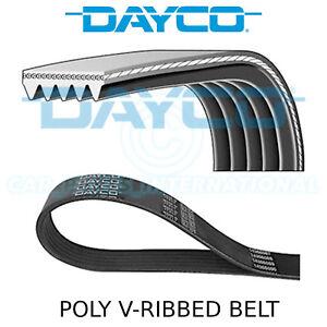 Dayco 5PK830 Poly Rib Belt