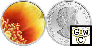 2013-039-Eastern-Prickly-Pear-Cactus-039-Colorized-25-Cent-Coin-Oversized-13274