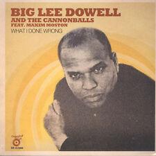 """Big Lee Dowell & The Cannonballs - What I Don (Vinyl 12"""" - 2016 - EU - Original)"""