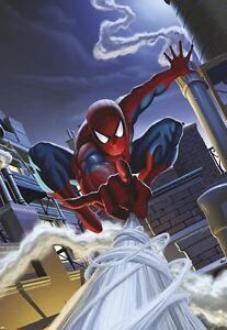 Childrens bedroom wallpaper mural Spider-Man Rooftop ...