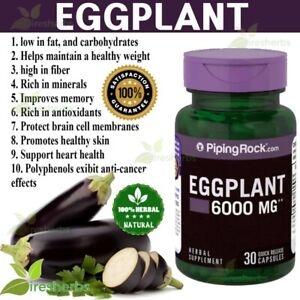 EGGPLANT-6000mg-ANTIOXIDANT-Weight-Loss-Memory-Skin-Herbal-Supplement-30-Capsule
