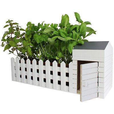 Indoor Allotment Herb Garden Window Box Includes Basil Coriander Oregano Seeds