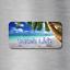 BEACH LIFE Vehicle License Plate Front Auto Tag Florida Hawaii California NEW