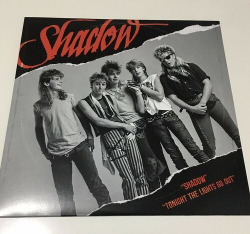 "SHADOW limited 10"" vinyl MINT mike mccready RARE pearl jam alice in chains"