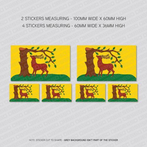 6 x BERKSHIRE Comté Drapeau Vinyle Stickers Autocollants Fenêtre Voiture Van-SKU5995