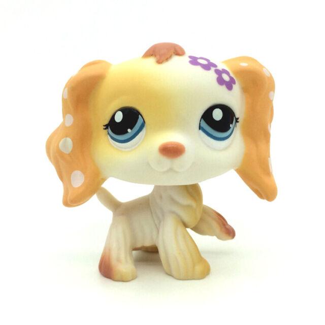 Rare Littlest Pet Shop Cream Cocker Spaniel Puppy Dog Blue Eyes Lps Toy 1615 For Sale Online Ebay