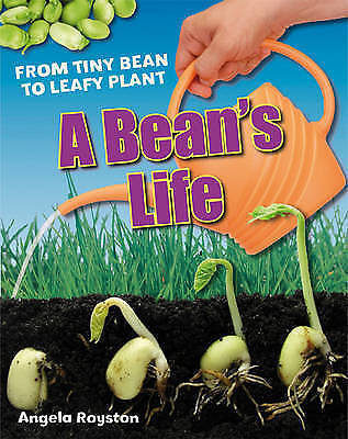 A Bean's Life. Age 6-7, below average readers by Royston, Angela (Paperback book