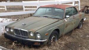 1975 Jaguar XJ12 | eBay