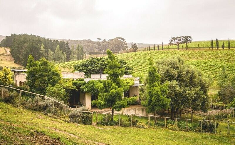Self-catering cottage on Hermanus Wine Route
