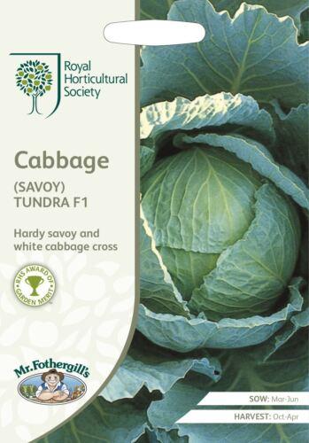 Savoie Mr Fothergills-légumes-RHS Chou Tundra F1-50 graines