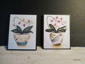 2 Maison De Poupées Miniature Vintage Botanique Photos W7-afficher Le Titre D'origine