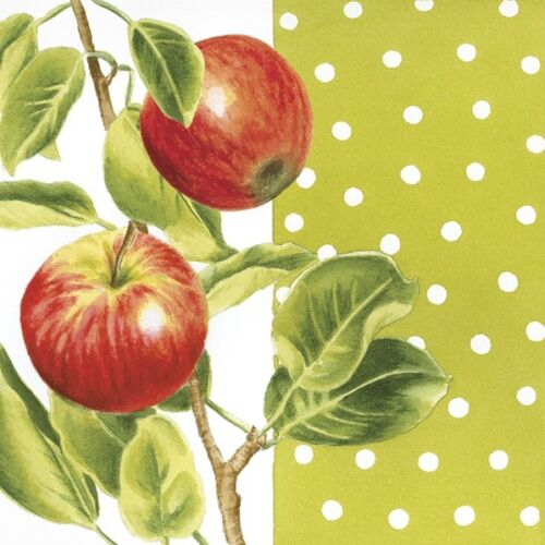 4 x Single Paper Napkins//3 Ply//Decoupage//Craft//Two Red Apples
