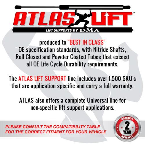 Atlas Hood Lift Support Shock Fits 11-18 Dodge Charger