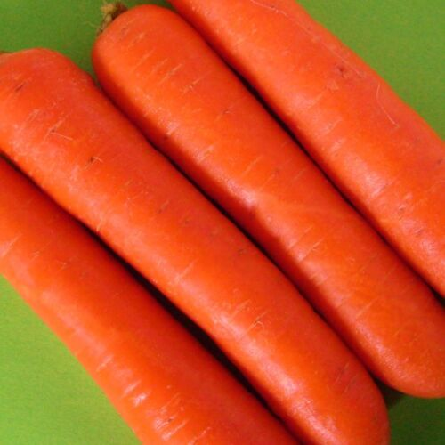 multiples of 25,000 seeds custom packed to order EARLY NANTES CARROT