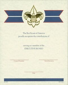 BOY-SCOUT-OFFICIAL-BSA-ADULT-EXECUTIVE-BOARD-LOCAL-COUNCIL-CERTIFICATE-8-5x10-034