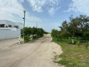 LOTES RESIDENCIALES EN 3a.FILA EN CHICXULUB PUERTO, CON AVENIDA DE ACCESO.