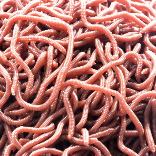 50pcs HENGJIA Soft Earthworm Fishing Bait Red Worm Lures Crankbaits Tackle Hooks