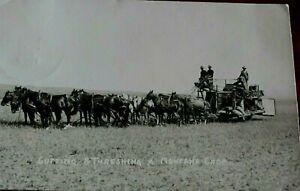 1909-Postcard-Cutting-amp-Threshing-A-Montana-Crop-Real-Photo-from-Glendive-Mo